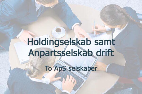 Holdingselskab og anpartsselskab drift. 2 aps selskaber